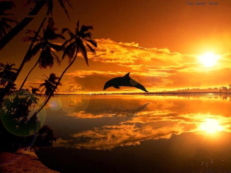 coucher de soleil 2kkerw10