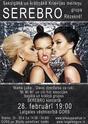 Постеры для выступления Серебра 0595511