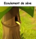 Indices Chasse aux trésors et Portail. Ecoule11