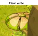 Indices Chasse aux trésors et Portail. Fleur_10