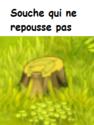 Indices Chasse aux trésors et Portail. Souche10