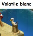 Indices Chasse aux trésors et Portail. Volati11