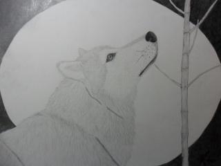 The art class Wolf_d10