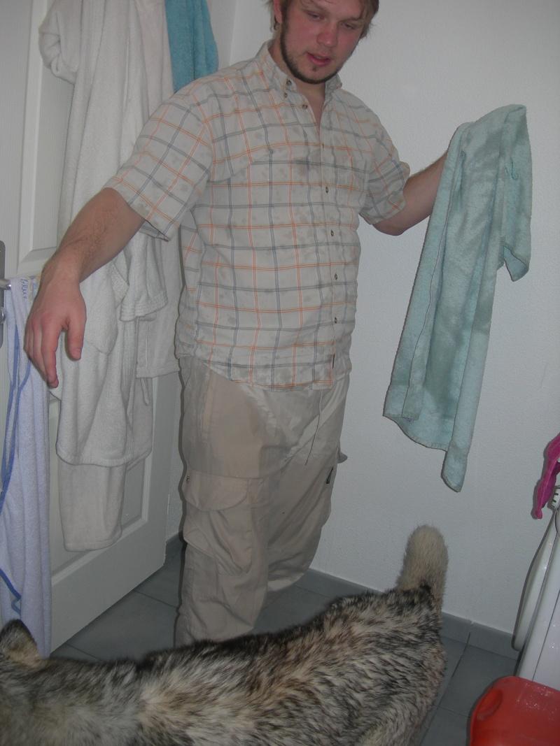 Gerry Black Sibérian Husky 3ans, asso Home Wanted ( départ 60)  - Page 6 Dscn8515