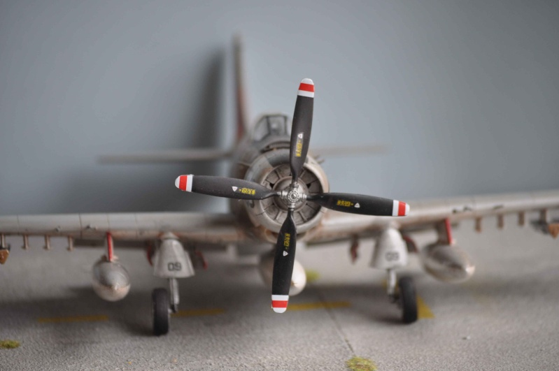 AH1 skyraider Dsc_0023