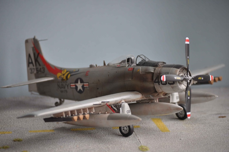 AH1 skyraider Dsc_0024