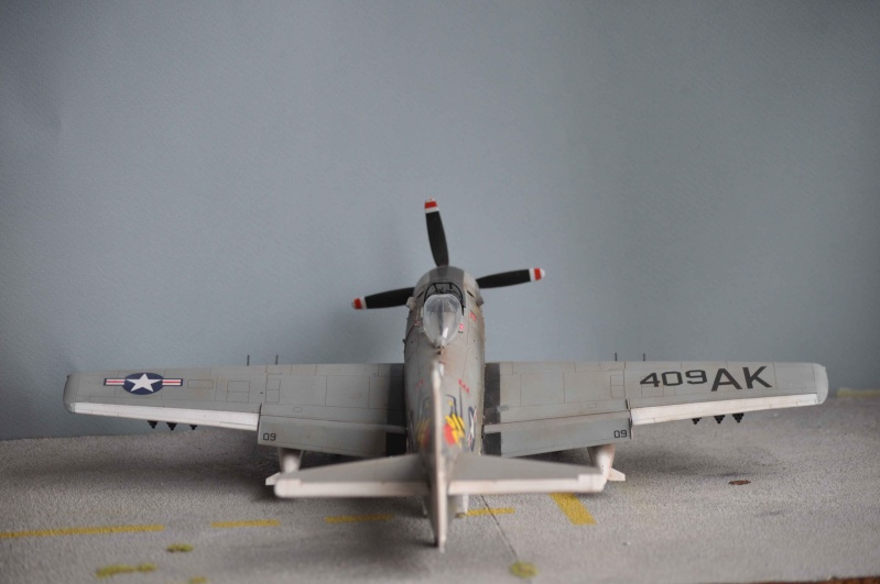 AH1 skyraider Dsc_0025