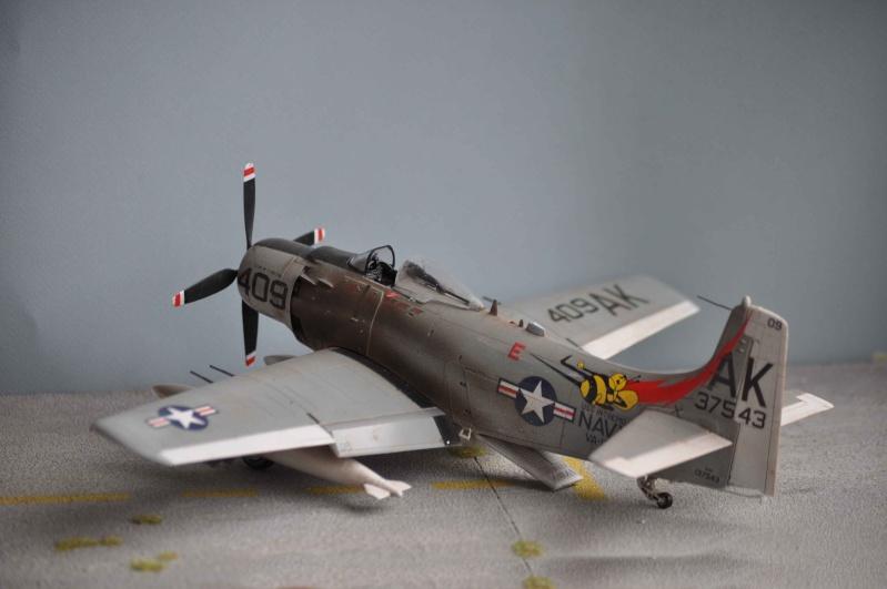 AH1 skyraider Dsc_0031