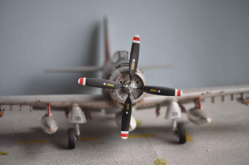 AH1 skyraider Dsc_0034