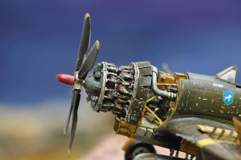 P 47D ardennes en grande revision Nikon_35