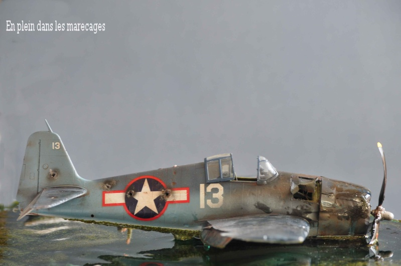 diorama 1:48  sauvez le pilote de la noyade!!! Nikon_60