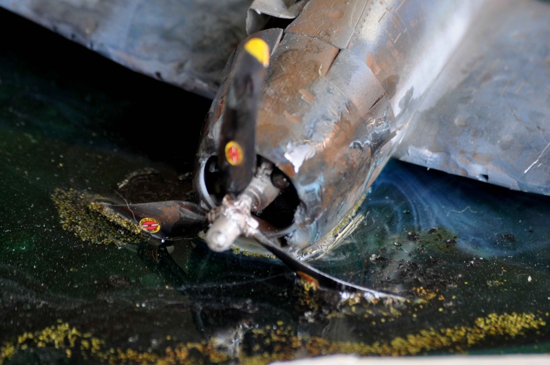 diorama 1:48  sauvez le pilote de la noyade!!! Nikon_64