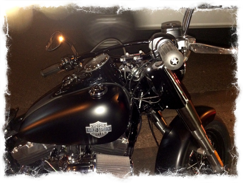 Softail Slim sous tous ses angles ! - Page 2 Img_1518