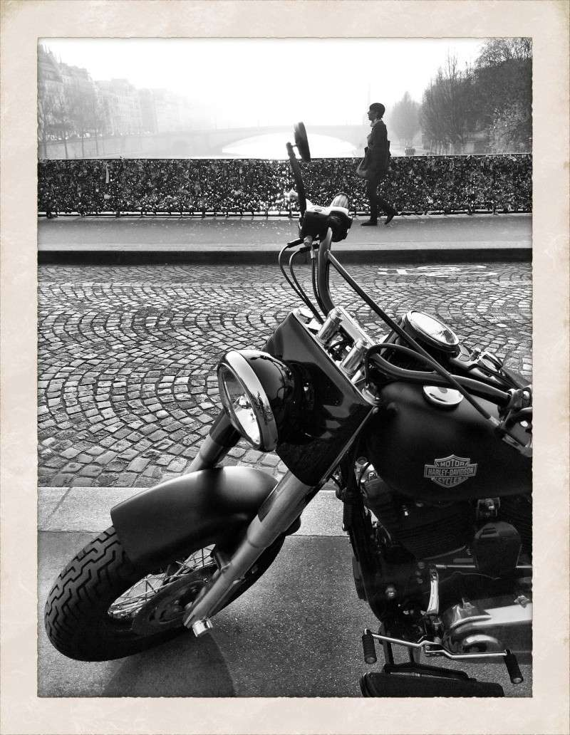 Softail Slim sous tous ses angles ! - Page 3 Img_1526