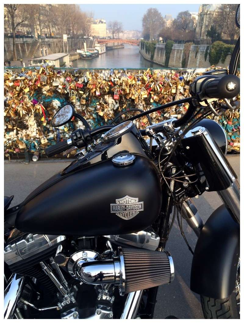 Softail Slim sous tous ses angles ! - Page 3 Img_1527