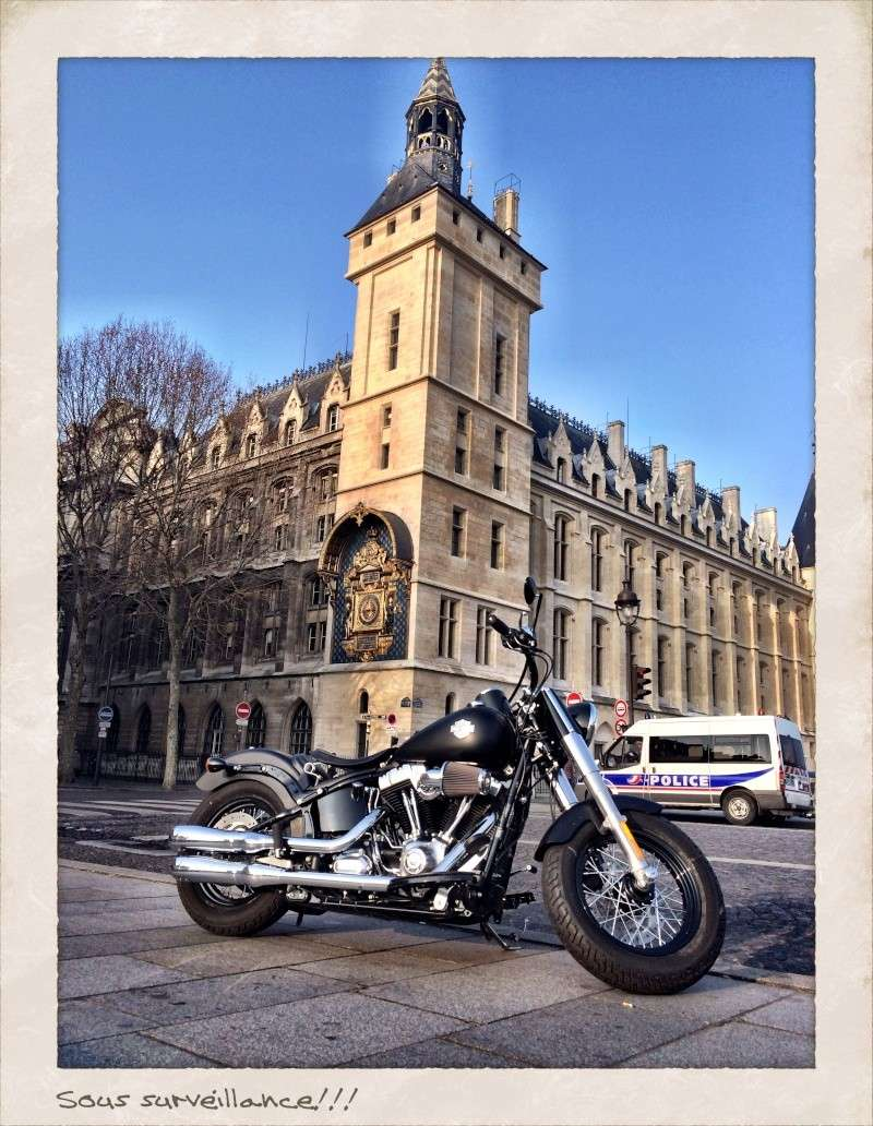 Softail Slim sous tous ses angles ! - Page 3 Img_1529