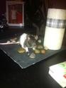 Mes ratounettes! Img_0910