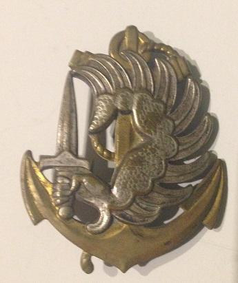 Les insignes de béret  Img_0531