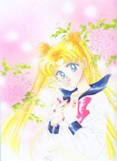 Senshi: Sailor Moon/ Usagi tsukino/ Princess Serenity 240px-10