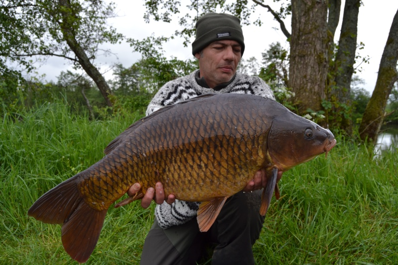 pêche sur la rivière Meuse   Dsc_0116