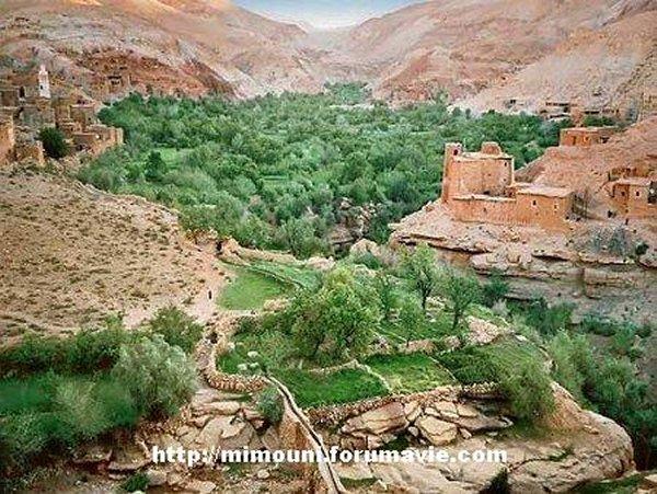 Amazigh Amazighité Amazighisation  1_mimo10
