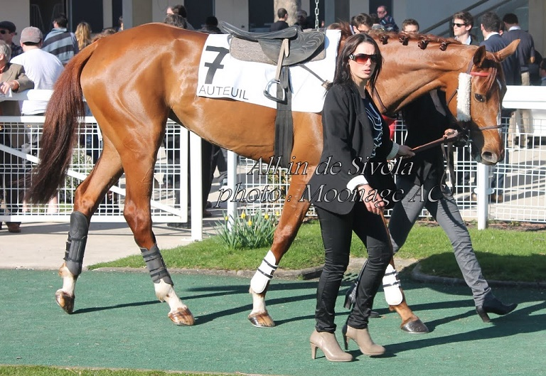 Photos Auteuil le 9-03-2014 All_in10