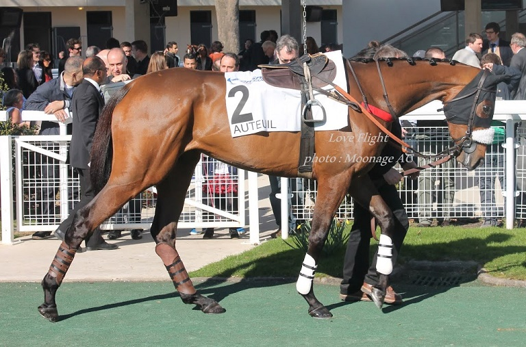 Photos Auteuil le 9-03-2014 Love_f10