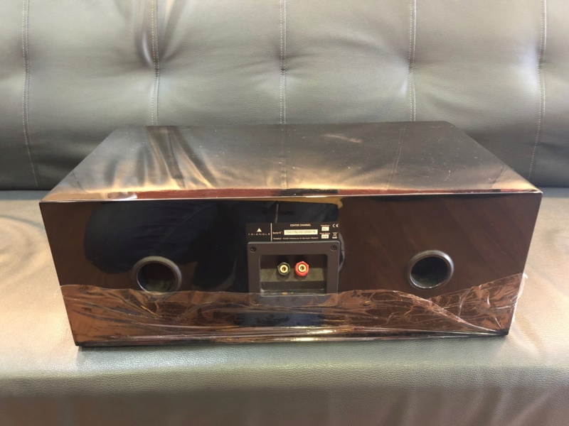 Triangle Center channel speaker (Used) Image318