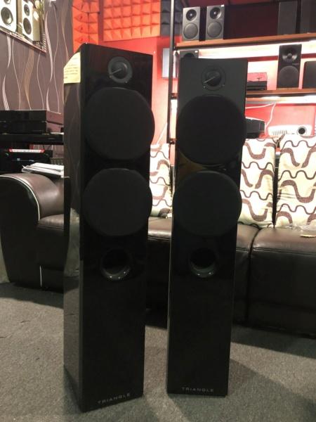 Triangle Floorstanding Speaker (Sold) Img_5116