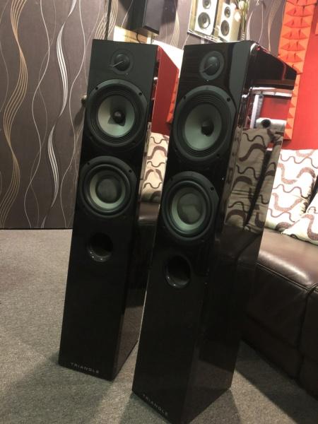 Triangle Floorstanding Speaker (Sold) Img_5118