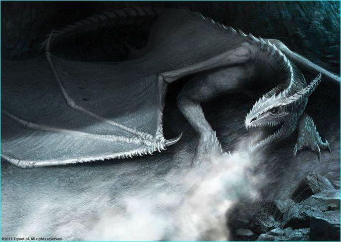 Mascotas especiales: Dragones  Copia_58