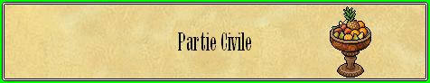 Grand Conseil Civil10