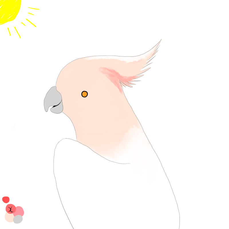 post your art! Pink_o12