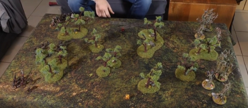 Fangorn vs Isengard [820 points] Fangor10