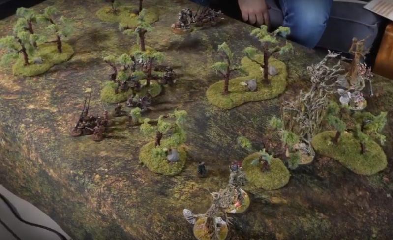 Fangorn vs Isengard [820 points] Fangor11