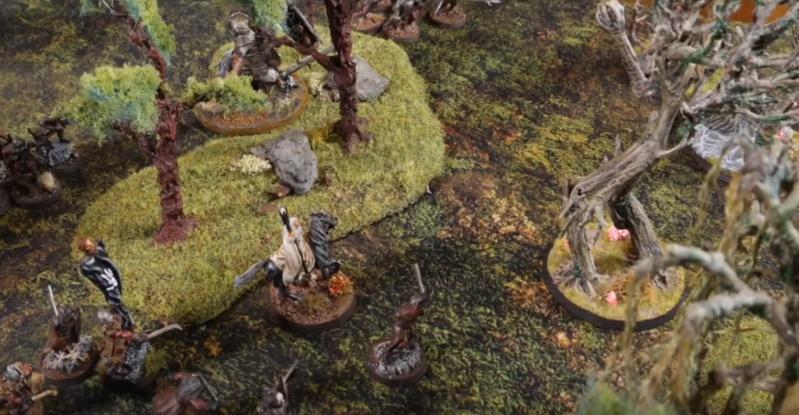 Fangorn vs Isengard [820 points] Fangor14