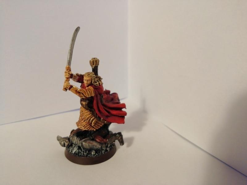 [Les Combattants du Gouffre] - Aragorn / Haldir & Capitaines Img_2047