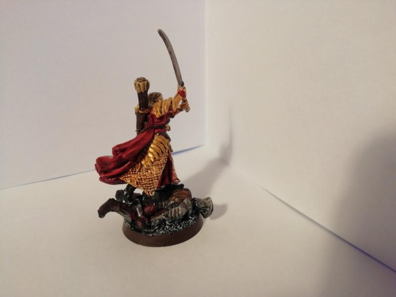 [Les Combattants du Gouffre] - Aragorn / Haldir & Capitaines Img_2048