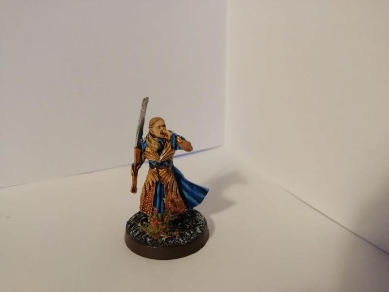 [Les Combattants du Gouffre] - Aragorn / Haldir & Capitaines Img_2049