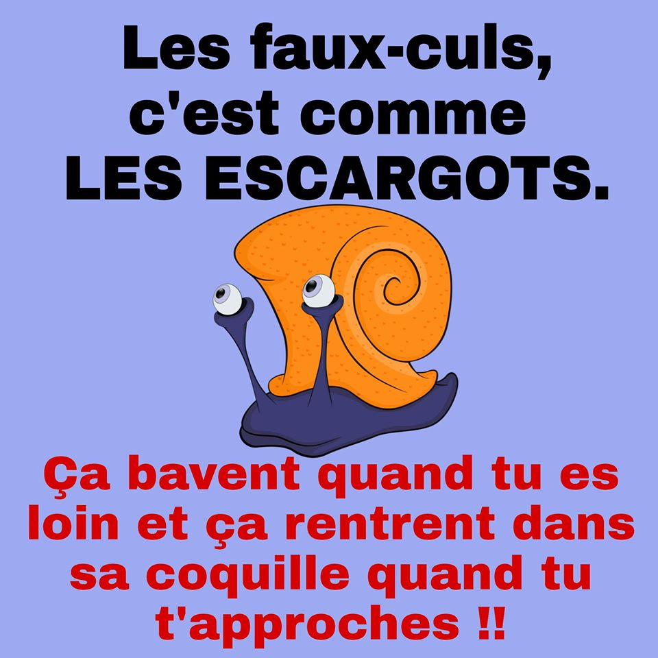 humour en images II - Page 2 14692010