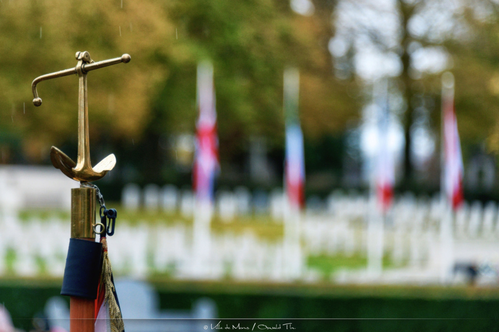 Commémoration du 11 novembre - Page 2 _tlr6611