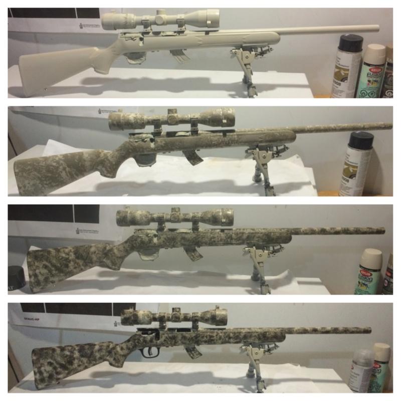 Quel choix pour carabine 22 841c7710