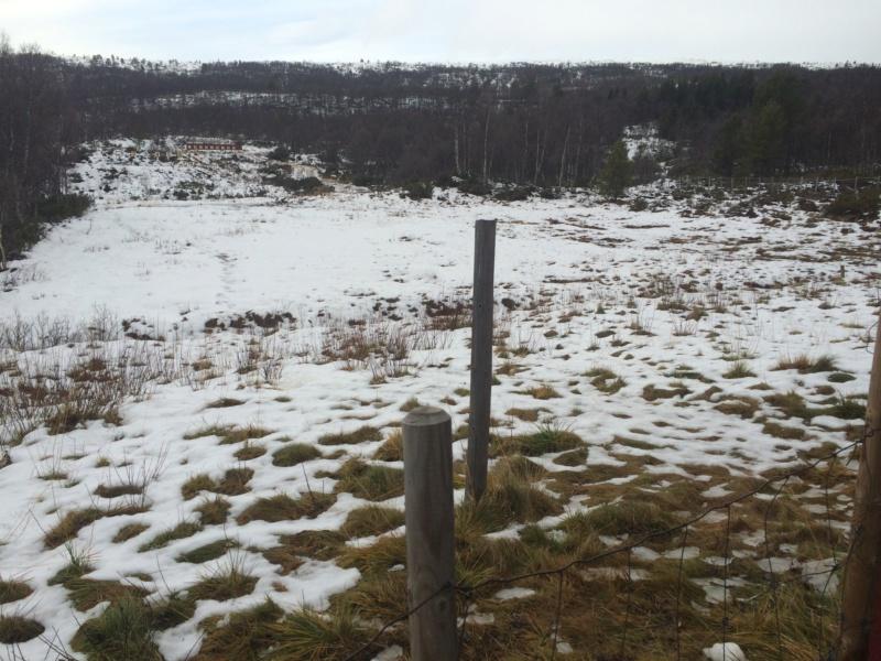 Champs de tir en Norvège Image73