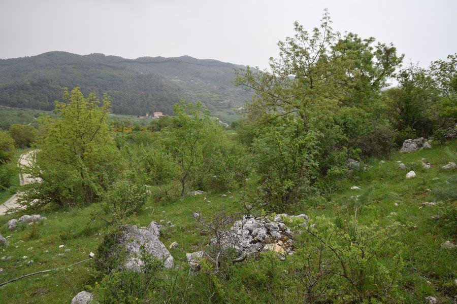 Sicile ouest RN Zingaro & Ficuzza (13,14 et 22/04/2019) P4221617