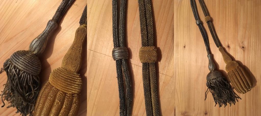 Dragonne de sabre argentée : déjà vue ? Dragon10