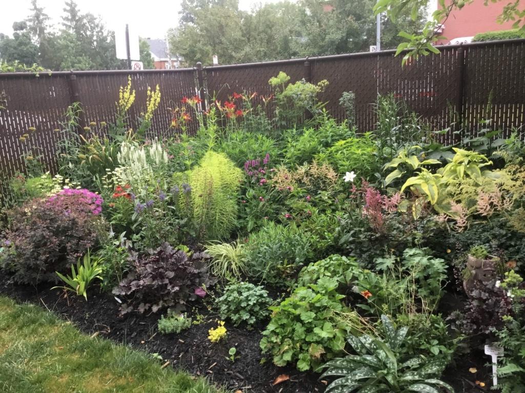 Que planter dans un jardin d'hémérocalles? 7558c310