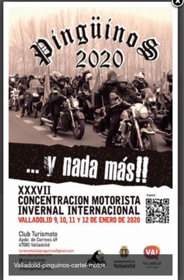 CONCENTRACIÓN (NACIONAL)   PINGÜINOS 2020  69029b10