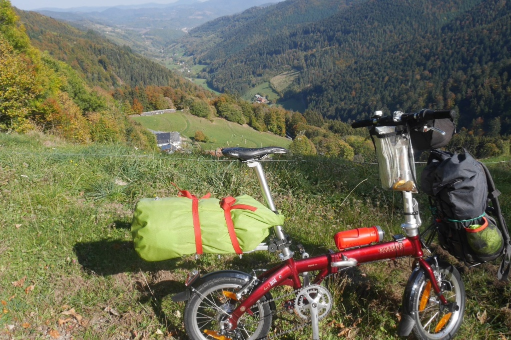 Vélo Bickerton 1507 -16 pouces [Vendu] P1010313