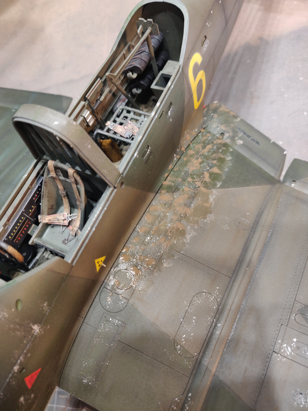 Junker Ju 87-A Stuka 1/24 - Page 15 Img_4004
