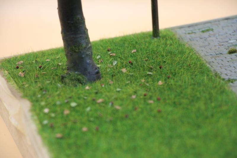Les Taxis de la Marne diorama au 1/35 ème - Page 3 Img_6611